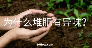 为什么堆肥有异味