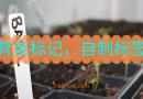 蔬菜育苗标记很重要,自制标签轻松解决问题!