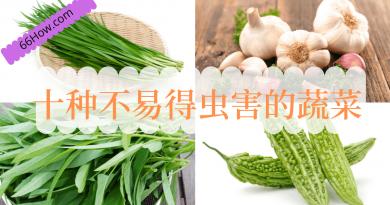 十种不易得虫害的蔬菜
