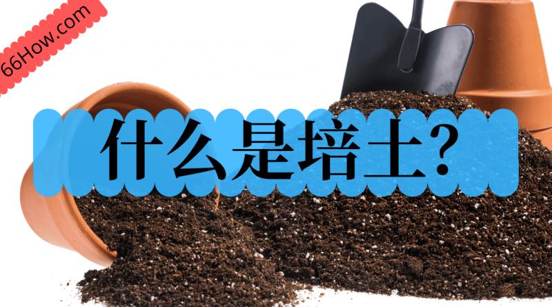 什么是培土?你知道吗?