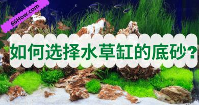 水草缸底沙的类型,如何选择水草缸的底砂